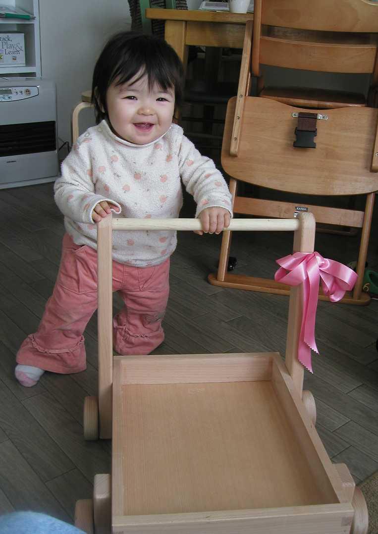 kokos-cart.JPG